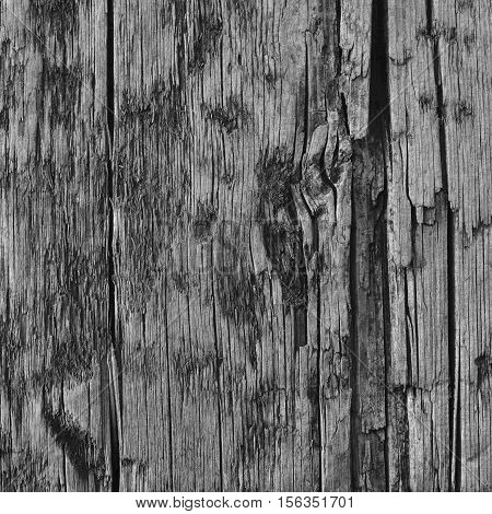 Natural Weathered Grey Tan Taupe Wooden Board, Cracked Ruined Rough Cut Sepia Wood Texture, Large Detailed Old Aged Gray Lumber Background Vertical Macro Closeup, Textured Crack Pattern