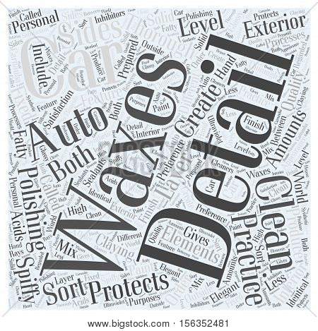 Spiffy Clean with Auto Detailing word cloud concept
