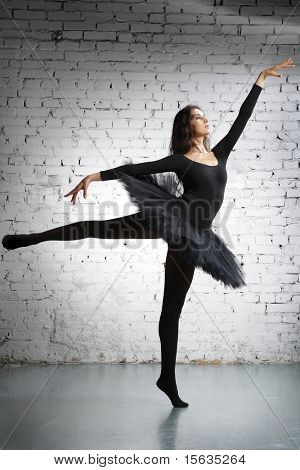 cute, young and beautiful ballet dancer posing