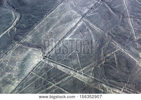 beautiful drawing spider to the desert of Nazca