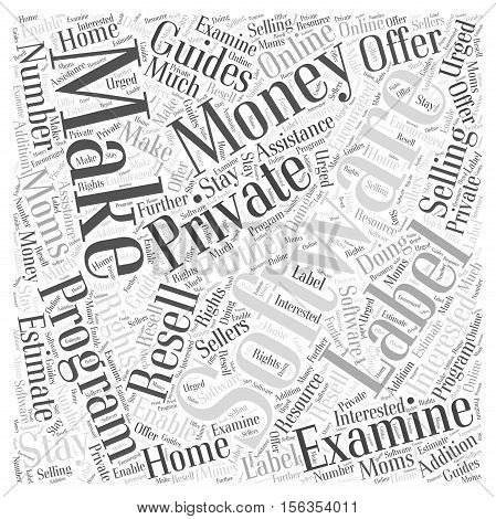 Stay at Home Moms Make Money Selling Software Programs word cloud concept