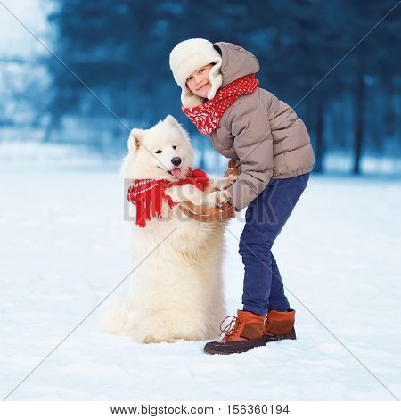 Christmas Happy Teenager Boy Playing With White Samoyed Dog In Winter Day, Dog Gives Paw Child On Sn