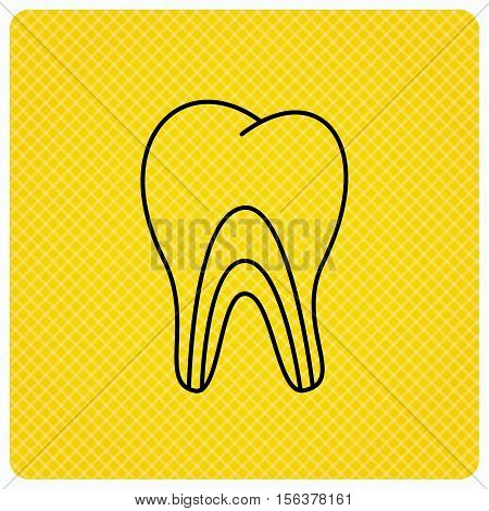 Dentinal tubules icon. Tooth medicine sign. Linear icon on orange background. Vector