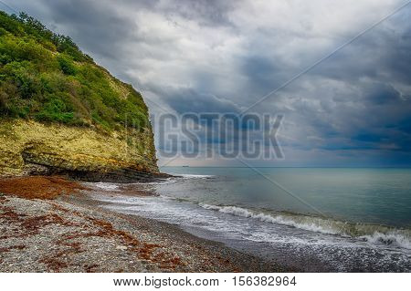 Rock Covered With Vegetation  Seafront  Rocky Beach Calm Cloudy Sky