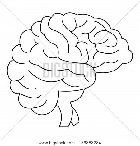 Brain icon. Outline illustration of brain vector icon for web