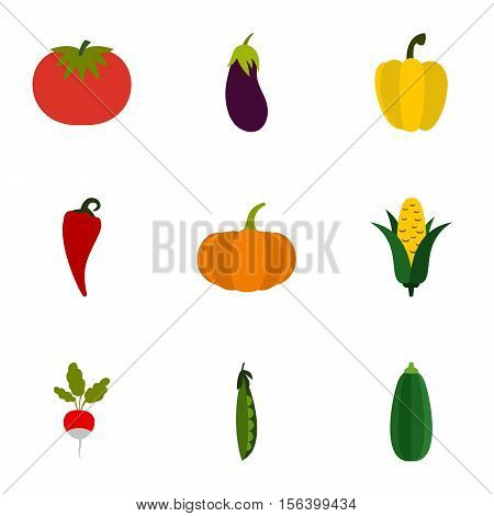 Orchard vegetables icons set. Flat illustration of 9 orchard vegetables vector icons for web