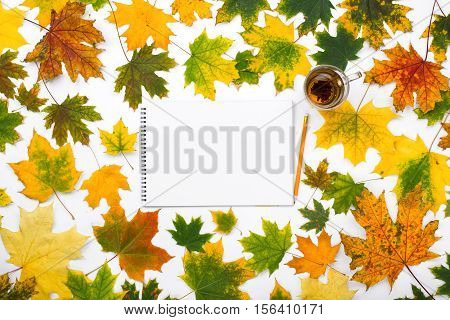 Empty album with a cup of tea in the frame of autumn leaves on a pink background. Autumn background