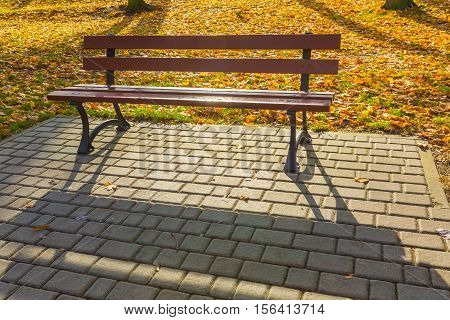 Bench In Autumnal  Park In Small Polish City