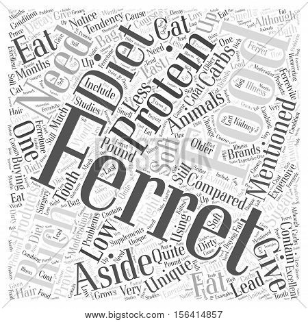 What Do Ferrets Eat word cloud concept text background