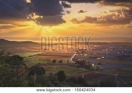 Bolgheri and Castagneto vineyard aerial panorama on sunset. Maremma Tuscany Italy Europe.