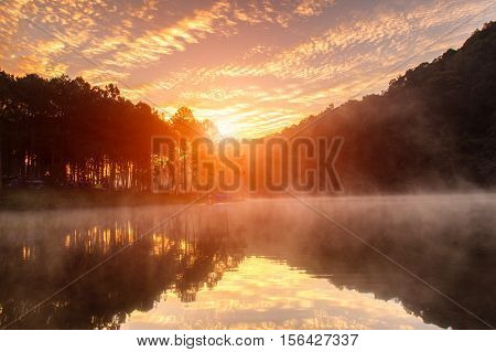 Sunrise at Pang-ung pine forest park Mae Hong Son North of Thailand