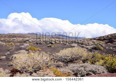 Landscape Of El Hierro Canary Island
