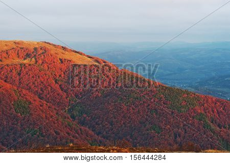 Colorful Red Autumn Landscape In The Mountain. Foggy Morning Mountain Illuminated By The Sun In The