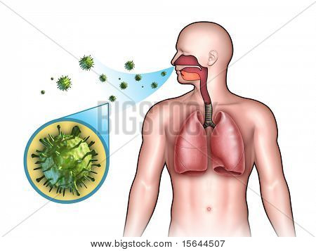 Some virus entering the respiratory system through the nose. Digital illustration. poster
