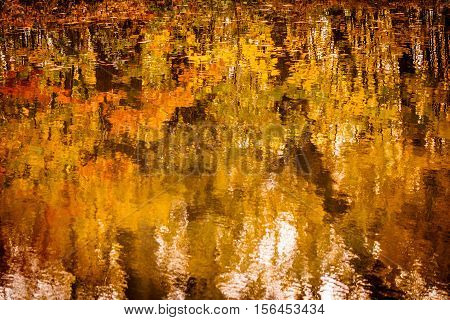 Beuatiful Autumn Colors in the River Reflexion