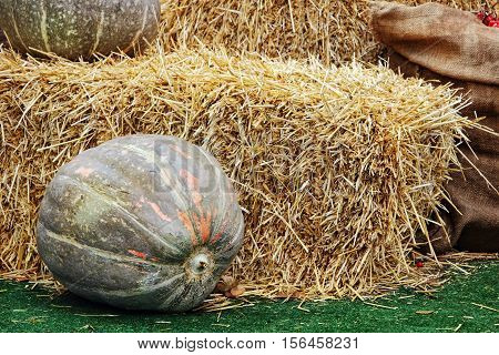 Thanksgiving Display of Big Pumpkin and hay stacks.Toned image.