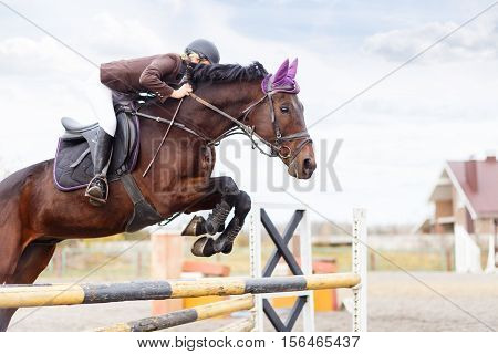 Young Rider Girl At Show Jumping. Jump Hurdle