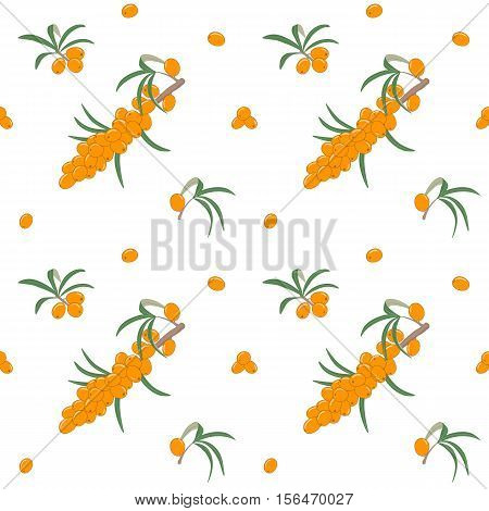 Seamless pattern with fresh ripe sea buckthorn berries on a branch with leaves. Natural medicine, medical herb. Vector illustration. For various designs.