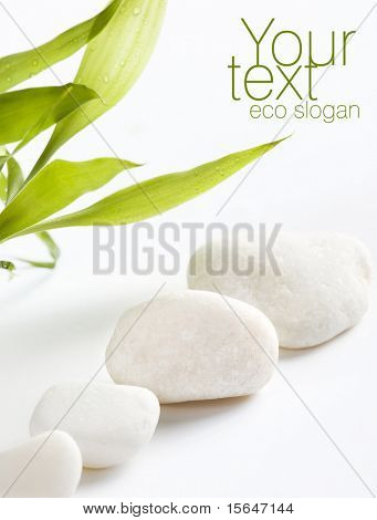 White stones and easy to remove the text