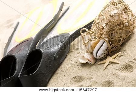 Shells and flippers on the beach