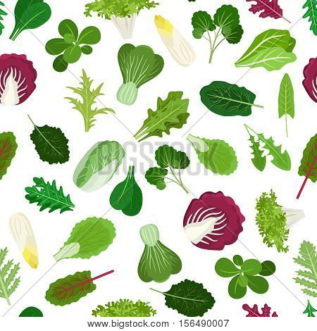 Salad vegetable leaves seamless pattern for cooking websites and wrapping paper for greengrocer shop. Vector illustration