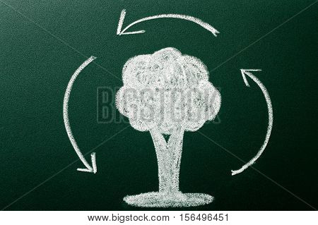 Concept Of Saving Enviroment On Green Blackboard