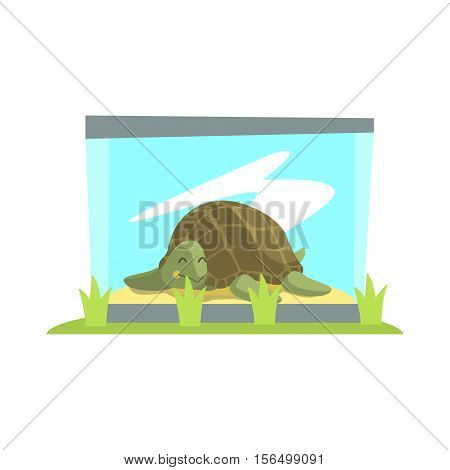 Big Green Turtle Laying Inside Glass Terrarium In Zoo. Wild Animal Enclosed In Outdoor Zoological Park Funky Style Illustration On White Background.