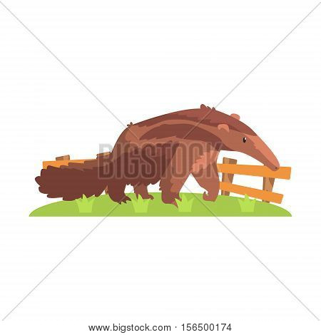 Brown Anteater With Long Snout Standing On Green Grass Patch In Open Air Zoo Enclosure. Wild Animal Enclosed In Outdoor Zoological Park Funky Style Illustration On White Background.