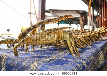Many crocodile was dried Tonle Sap in Cambodia, which is unique here.