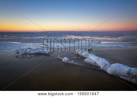 Winter landscape with frozen snags. Composition of nature.