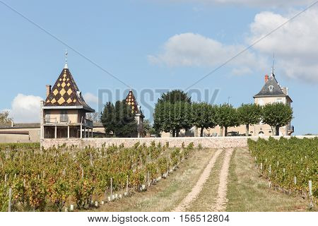 Chateau Portier with vineyards in Beaujolais, France