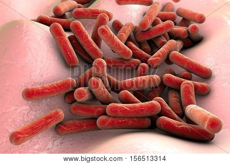Mycobacterium tuberculosis bacteria inside human body, close-up view. 3D illustration