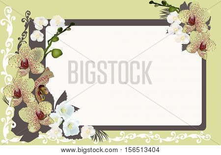 illustration with orchids in frame on yellow background