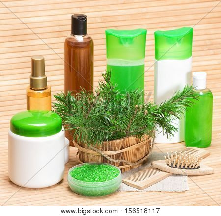 Natural hair care cosmetic products and accessories. Sea salt, shampoo, conditioner, balm, mask, oil for facilitate hair combing, wooden combs with fresh coniferous branches in wooden basket