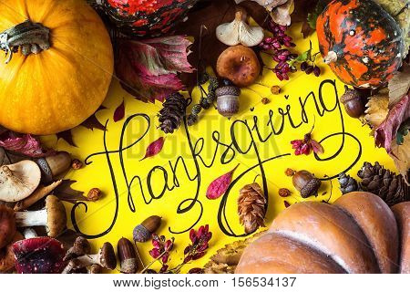 Happy Thanksgiving Day holiday background postcard concept cornucopia full harvest fruit vegetable Hand drawn greeting card autumn leaves pumpkin mushroom acorn still-life rustic top view flat lay tag