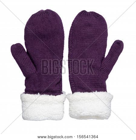 Mittens Isolated On White Background. Knitted Mittens. Mittens Top View.purple Mittens