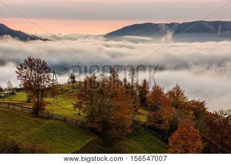 Foggy Sunrise In High Mountains