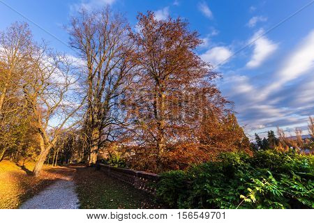 Colorful autumn in the park. Moravian landscape Lysice.