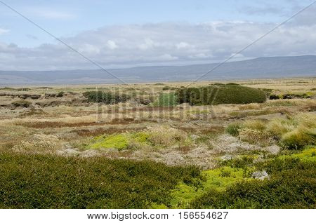 Seno Otway is a large inland sound lying between Brunswick Peninsula and Riesco Island in southern Chile.