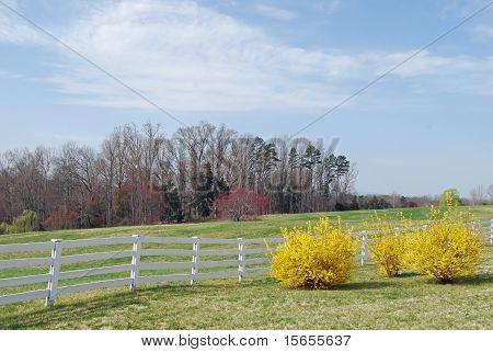 Rural Virginia Landscape
