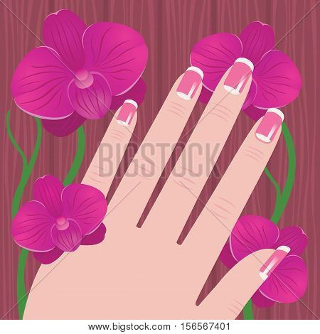 Hand of a woman with French manicure on a tree and pink orchid background Stock vector illustration