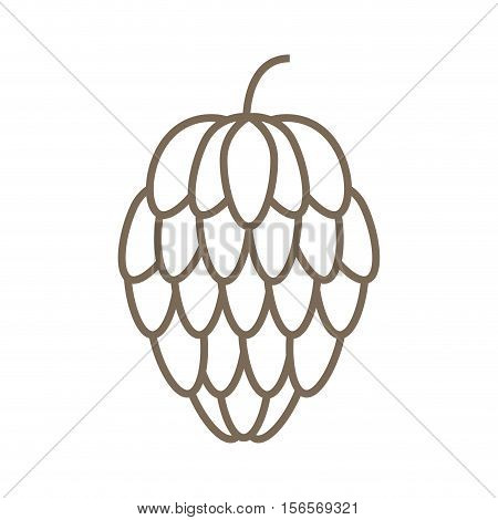 pine seed isolated icon vector illustration design