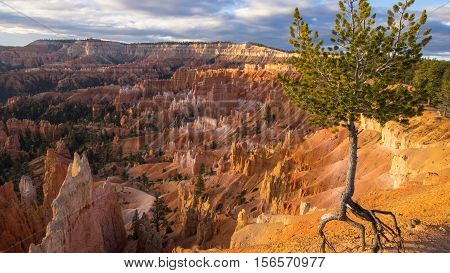 Bryce Canyon National Park, a sprawling reserve in southern Utah. 11.14.2016
