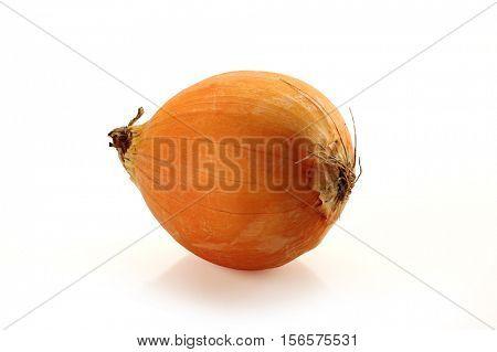 Extreme close-up image of onion, studio isolated on white background