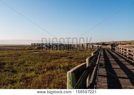 Path to lookout point at the Tijuana River National Estuarine Research Reserve in San Diego, California.