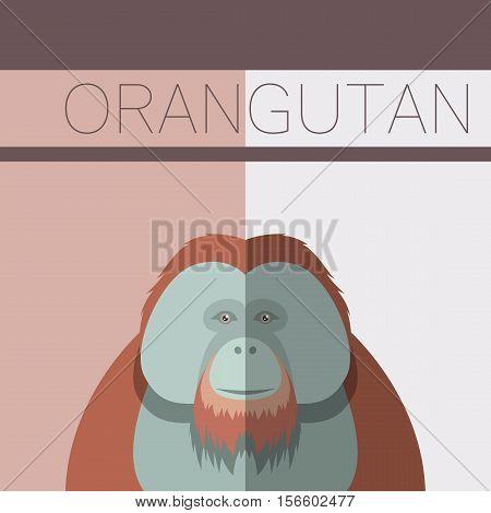 Vector image of the Orangutan flat postcard