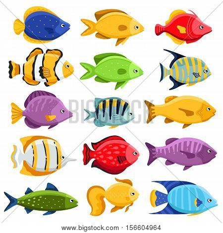 Colorful coral reef tropical fish set vector illustration. Sea fish collection isolated on white background. Cartoon aquarium fish icons.