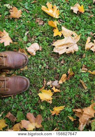 season, footwear and people concept - feet in boots with autumn leaves on grass