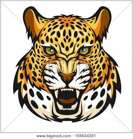 Vector jaguar portrait. Jaguar head isolated on white background.