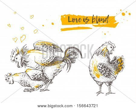 Mating of a rooster and hen. Brood-hen shyly turned her head. Postcard handmade illustration. It may be used for funny greeting card. Hand drawn picture. Vector illustration for your design.